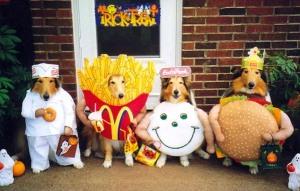 nourriture-chien